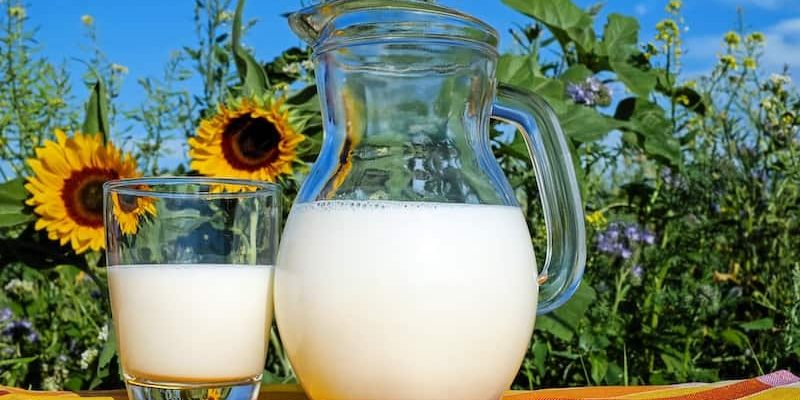Can You Freeze Milk For Camping?