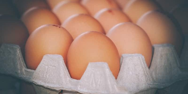How To Store Eggs For Camping